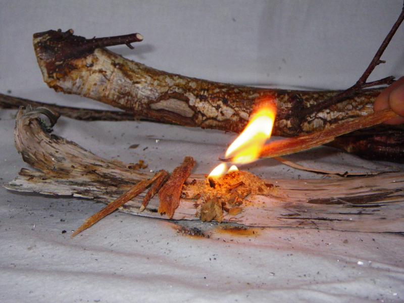 Allume feux bois gras fat wood survie savoir faire - Faire un feu de camp dans son jardin ...